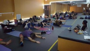 Miami Yin Yoga Training with Urban Bliss Yoga